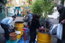 nealsyardtreeplanting4